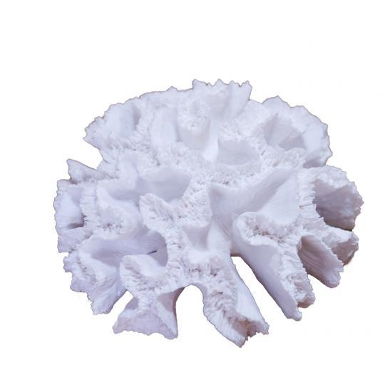 Coral em Poliresina Branco